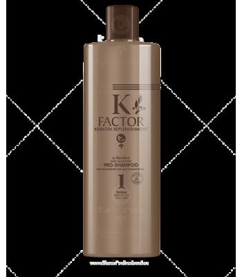 K Factor Step 1 Pro Shampoo